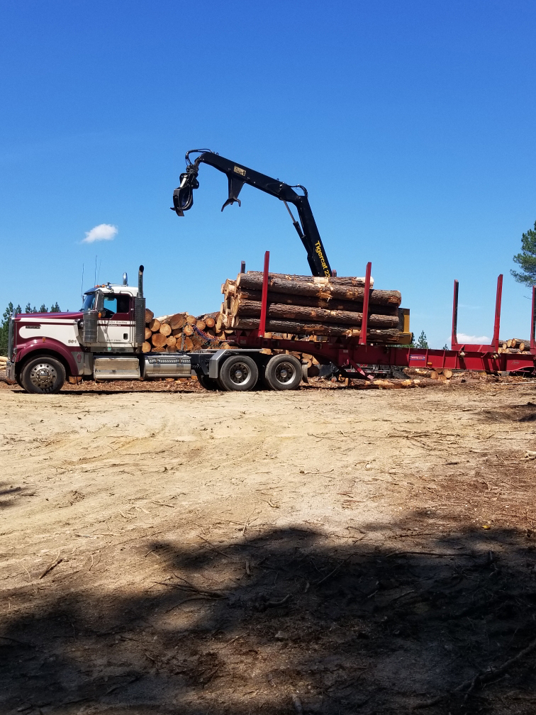 Logging Truck loading timber.